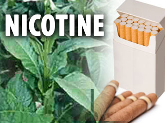 How to Pass Nicotine Drug Test