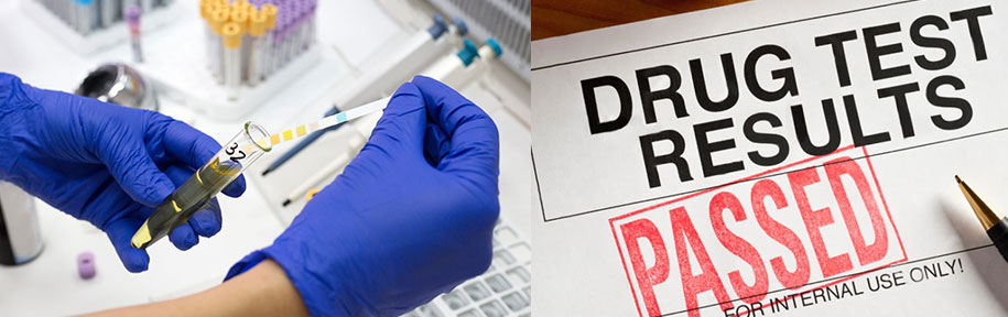 pass-a-drug-test-with-smartsourcenews.com